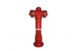 Hidrant suprafata DN65-1250mm